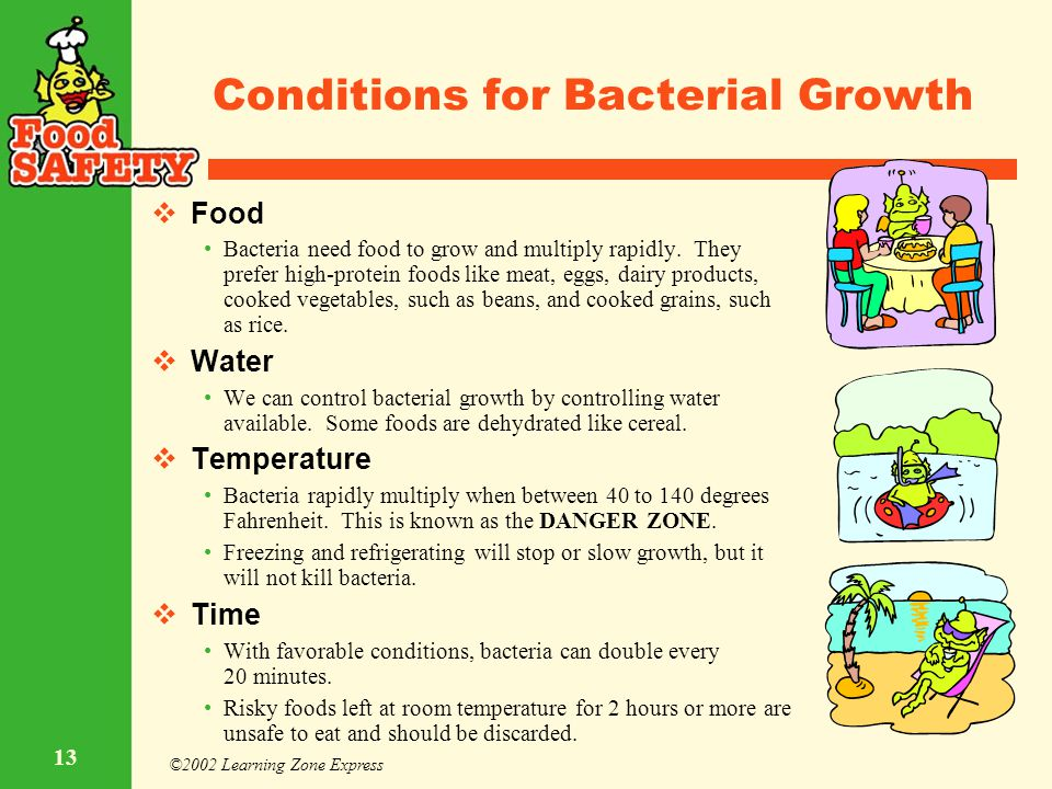 ©2002 Learning Zone Express 13 Conditions for Bacterial Growth  Food Bacteria need food to grow and multiply rapidly. They prefer high-protein foods