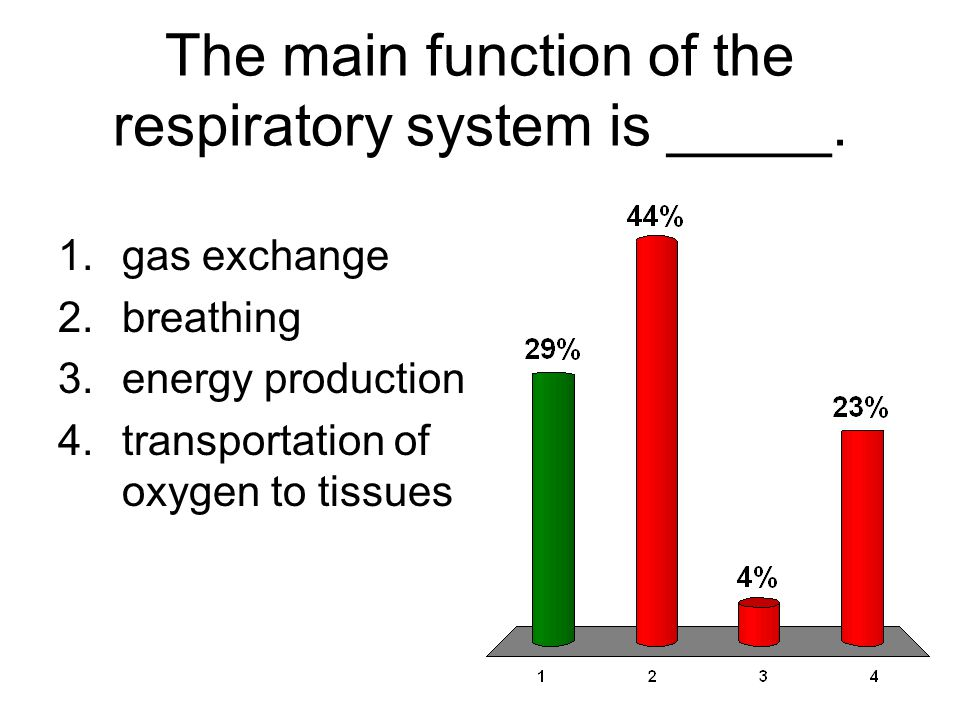 The main function of the respiratory system is _____. 1.gas exchange 2.breathing 3.energy production 4.transportation of oxygen to tissues