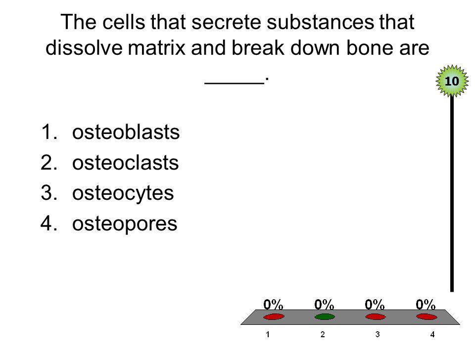 The cells that secrete substances that dissolve matrix and break down bone are _____. 1.osteoblasts 2.osteoclasts 3.osteocytes 4.osteopores 10
