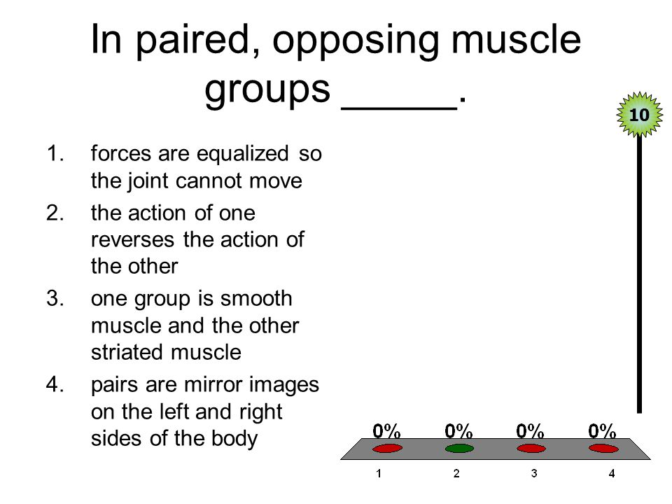 In paired, opposing muscle groups _____. 1.forces are equalized so the joint cannot move 2.the action of one reverses the action of the other 3.one gr