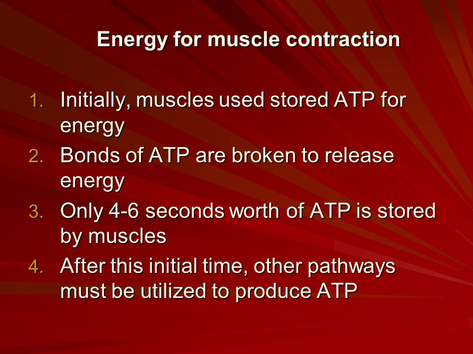 Energy for muscle contraction 1. Initially, muscles used stored ATP for energy 2. Bonds of ATP are broken to release energy 3. Only 4-6 seconds worth