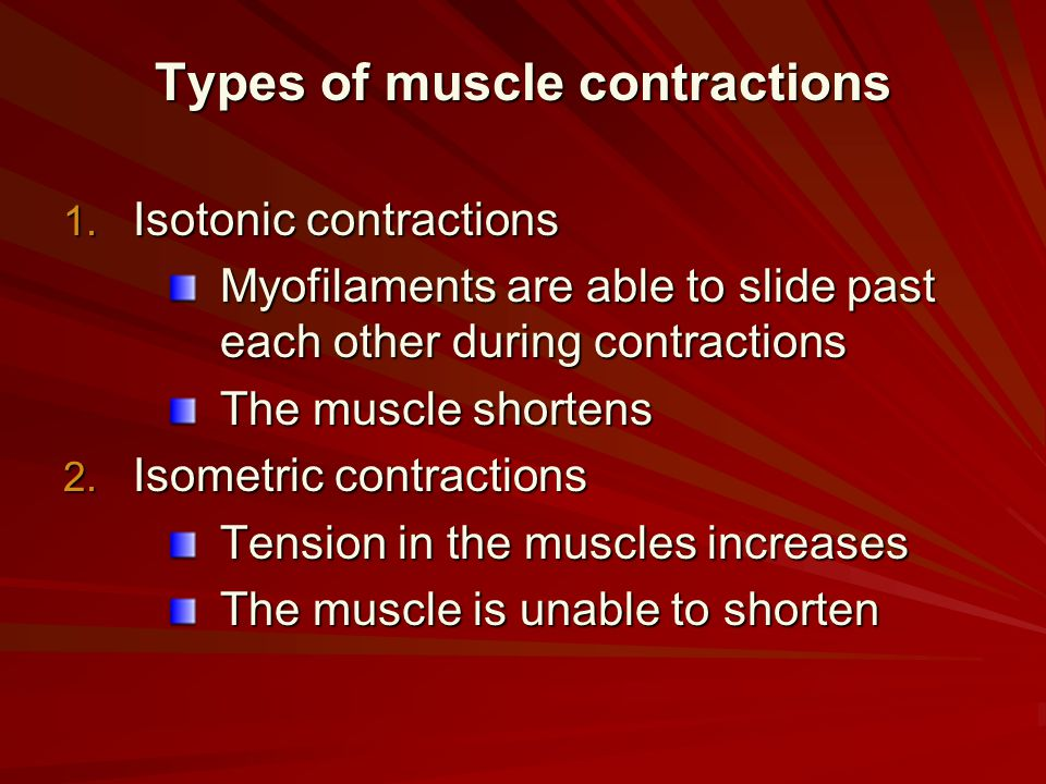 Types of muscle contractions 1. Isotonic contractions Myofilaments are able to slide past each other during contractions The muscle shortens 2. Isomet