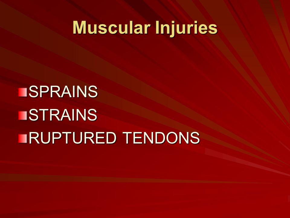 Muscular Injuries SPRAINSSTRAINS RUPTURED TENDONS