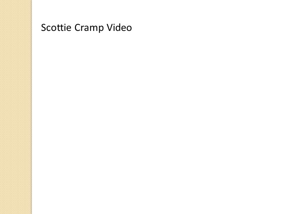 Scottie Cramp Video