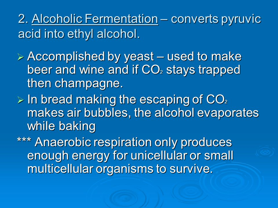 2. Alcoholic Fermentation – converts pyruvic acid into ethyl alcohol.