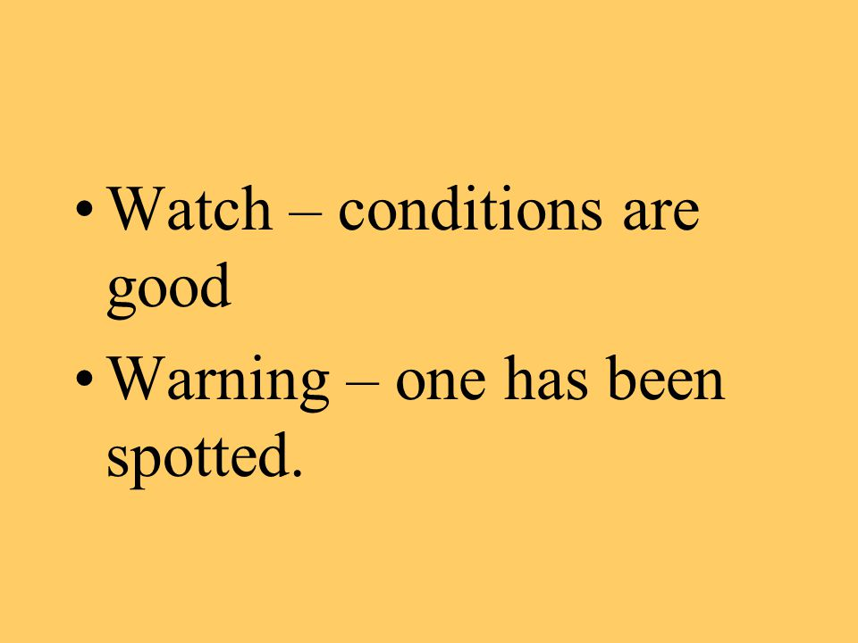 Watch – conditions are good Warning – one has been spotted.