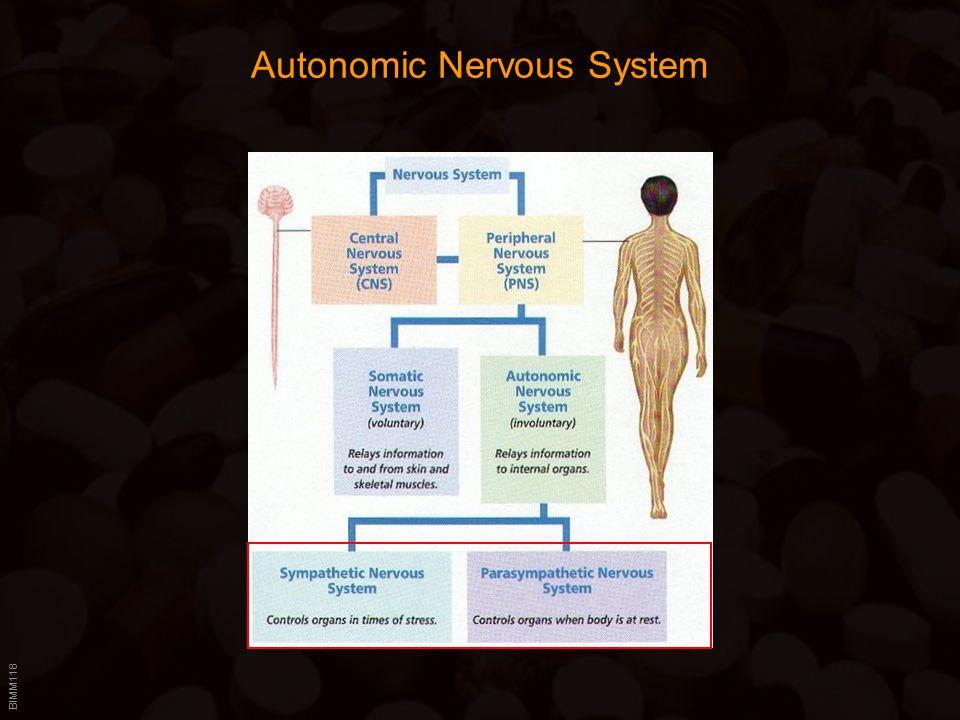 BIMM118 Autonomic Nervous System