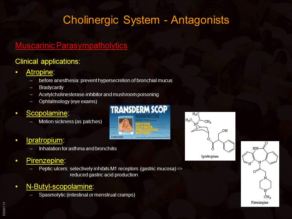BIMM118 Cholinergic System - Antagonists Muscarinic Parasympatholytics Clinical applications: Atropine: –before anesthesia: prevent hypersecretion of bronchial mucus –Bradycardy –Acetylcholinesterase-inhibitor and mushroom poisoning –Ophtalmology (eye exams) Scopolamine: –Motion sickness (as patches) Ipratropium: –Inhalation for asthma and bronchitis Pirenzepine: –Peptic ulcers: selectively inhibits M1 receptors (gastric mucosa) => reduced gastric acid production N-Butyl-scopolamine: –Spasmolytic (intestinal or menstrual cramps)