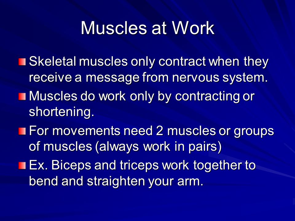 Muscular Strength and Flexibility Exercise makes individual muscle cells grow in size – that makes the whole muscle thicker The thicker the muscle the stronger it is Stretching makes muscles more flexible Prepares muscles for exercise or play
