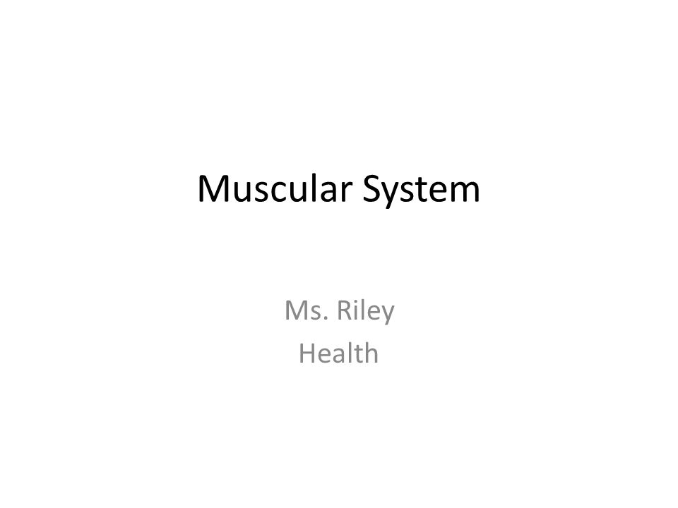 Muscular System Ms. Riley Health