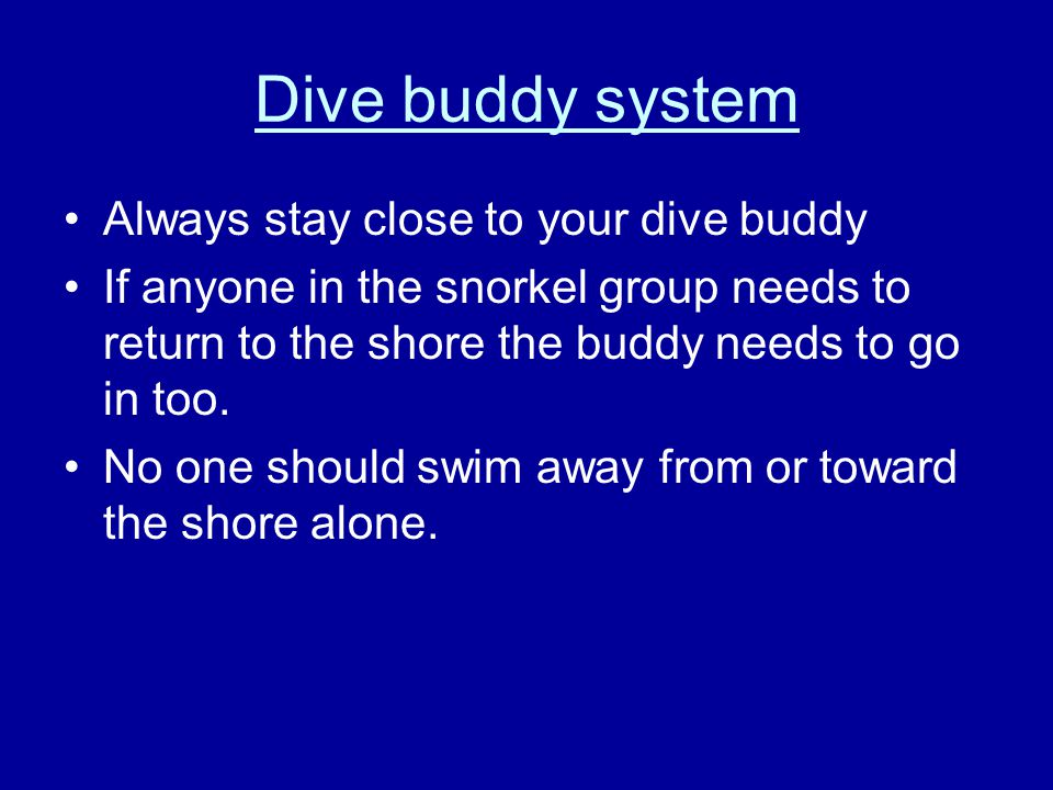 Scuba Diving Know the usage and procedures involved with all equipment.