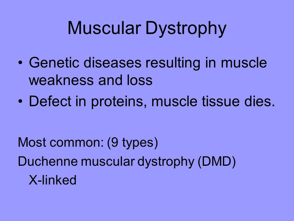 Muscular Dystrophy Genetic diseases resulting in muscle weakness and loss Defect in proteins, muscle tissue dies. Most common: (9 types) Duchenne musc