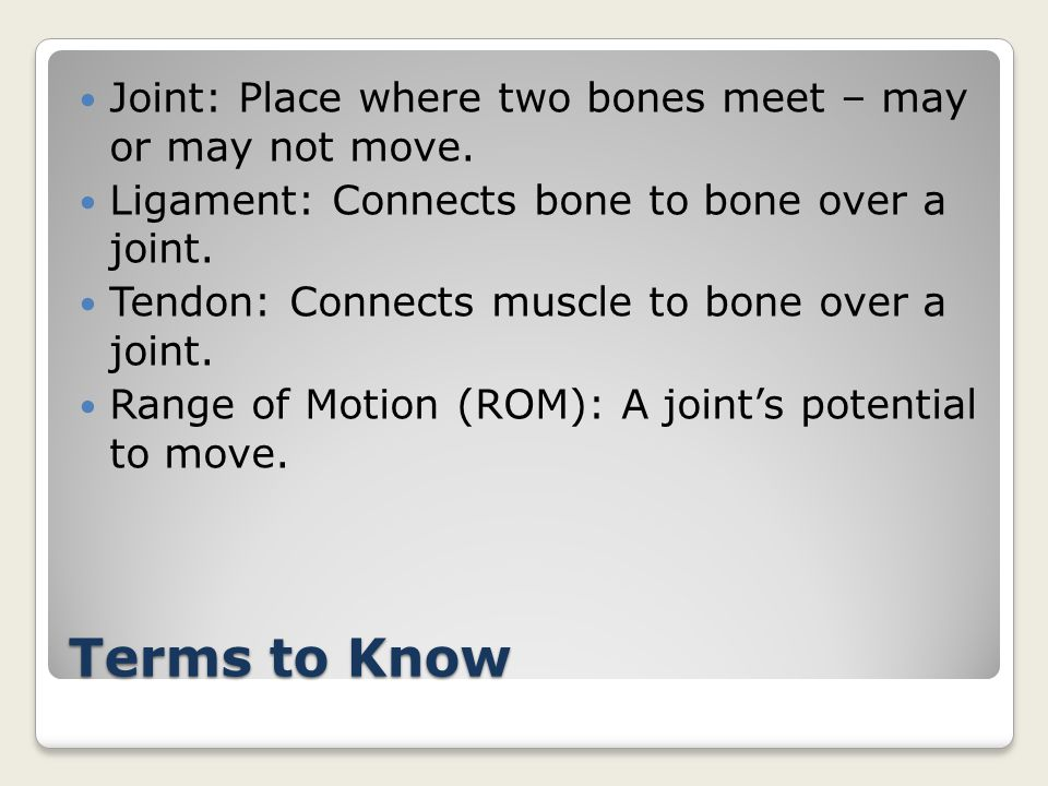 Terms to Know Joint: Place where two bones meet – may or may not move.