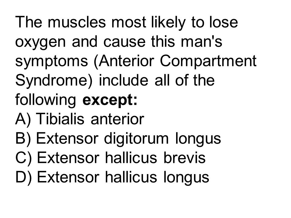 The muscles most likely to lose oxygen and cause this man s symptoms (Anterior Compartment Syndrome) include all of the following except: A) Tibialis anterior B) Extensor digitorum longus C) Extensor hallicus brevis D) Extensor hallicus longus