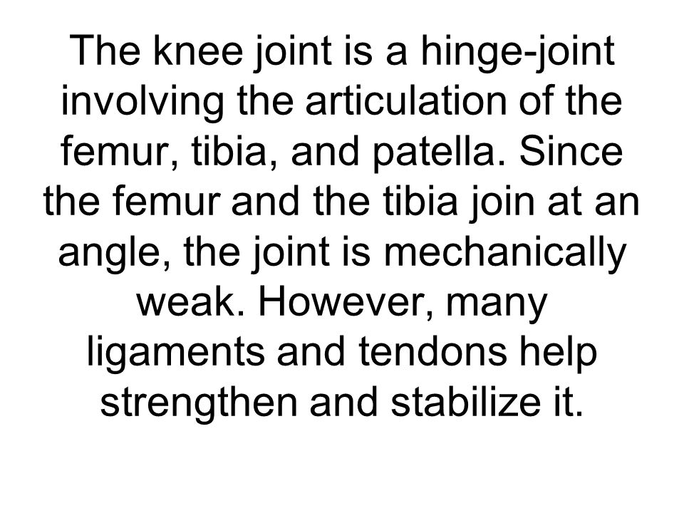 The knee joint is a hinge-joint involving the articulation of the femur, tibia, and patella.