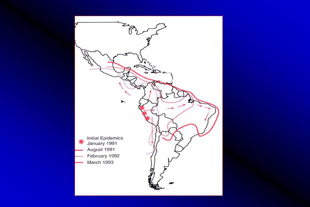 Hemorrhagic Bullae