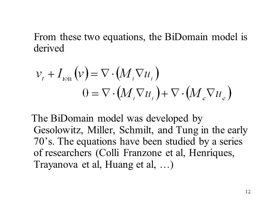 12 From these two equations, the BiDomain model is derived The BiDomain model was developed by Gesolowitz, Miller, Schmilt, and Tung in the early 70's.
