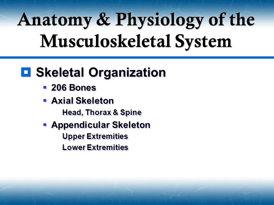 Musculoskeletal Injury Management Medications  Meperidine  Demerol  Narcotic Analgesic  Dose  50-100 mg  Counter Agent  Narcan  Meperidine  Demerol  Narcotic Analgesic  Dose  50-100 mg  Counter Agent  Narcan