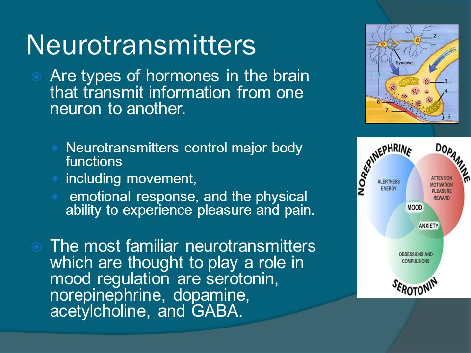 Neurotransmitters  Αre types of hormones in the brain that transmit information from one neuron to another. Neurotransmitters control major body func