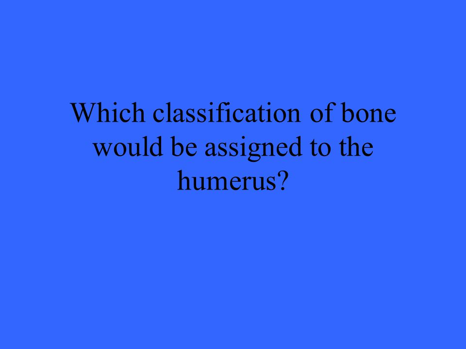 Which classification of bone would be assigned to the humerus?