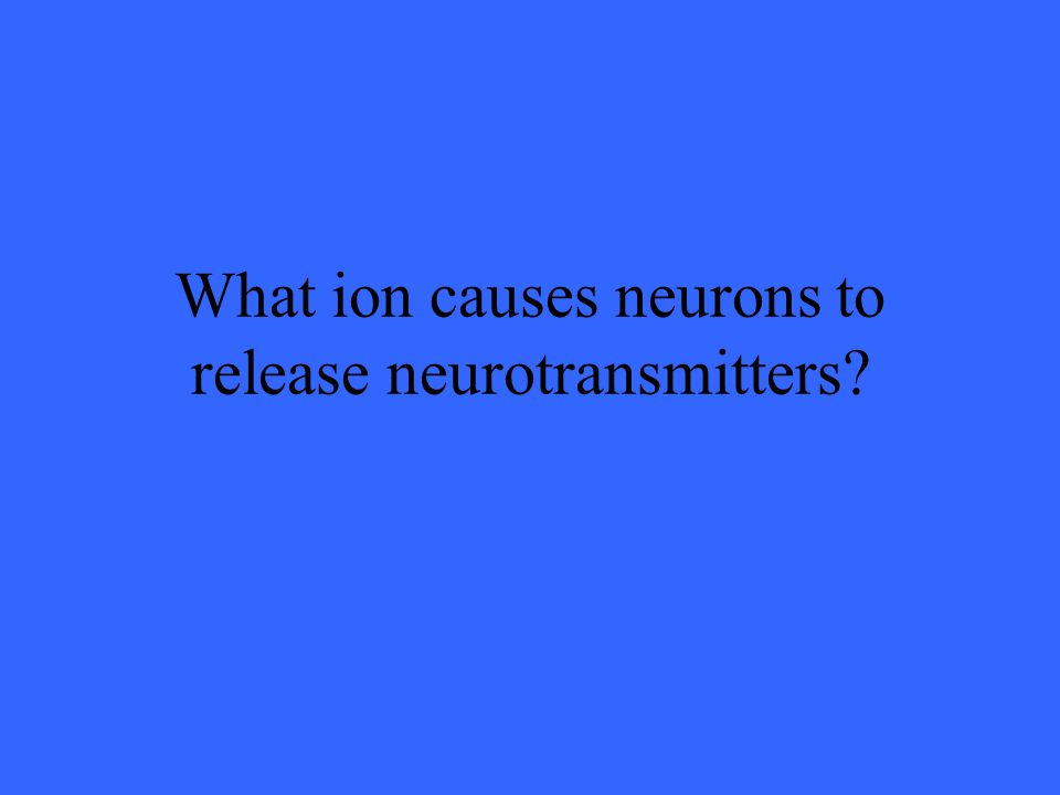 What ion causes neurons to release neurotransmitters