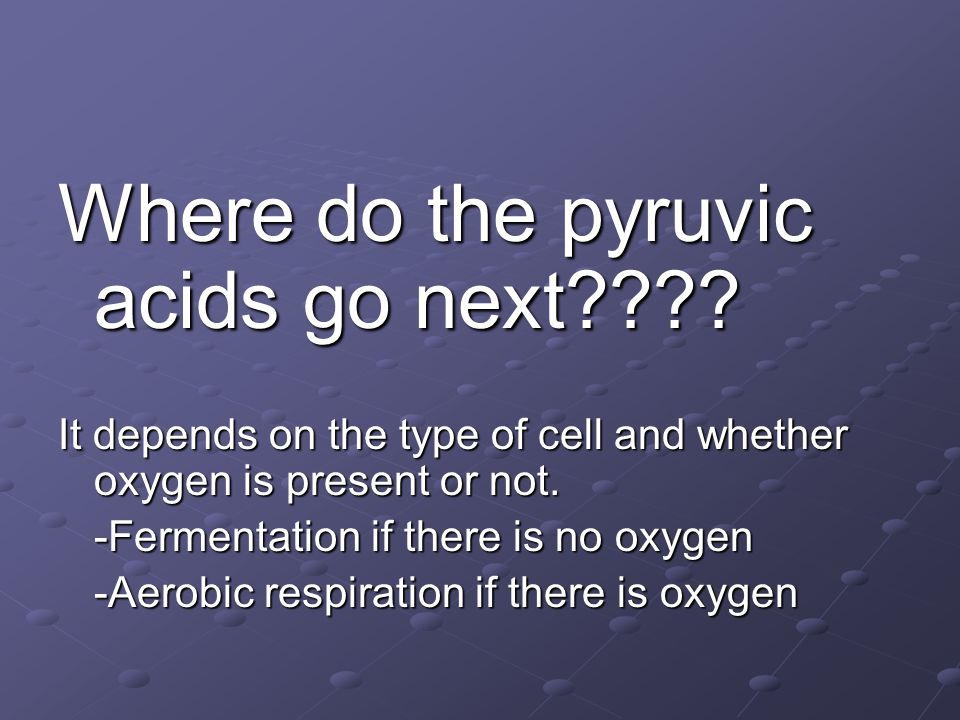 Where do the pyruvic acids go next???? It depends on the type of cell and whether oxygen is present or not. -Fermentation if there is no oxygen -Aerob