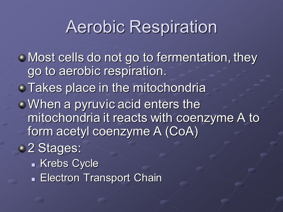 Aerobic Respiration Most cells do not go to fermentation, they go to aerobic respiration.