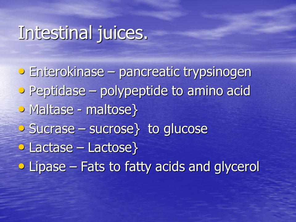 Intestinal juices. Enterokinase – pancreatic trypsinogen Enterokinase – pancreatic trypsinogen Peptidase – polypeptide to amino acid Peptidase – polyp