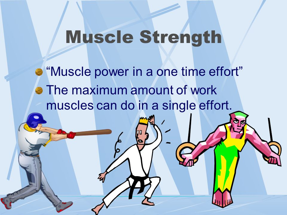 Four Components of Fitness Muscle Strength Muscle Endurance Flexibility Heart and Lung Endurance