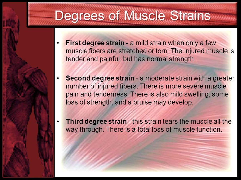 Degrees of Muscle Strains First degree strain - a mild strain when only a few muscle fibers are stretched or torn.