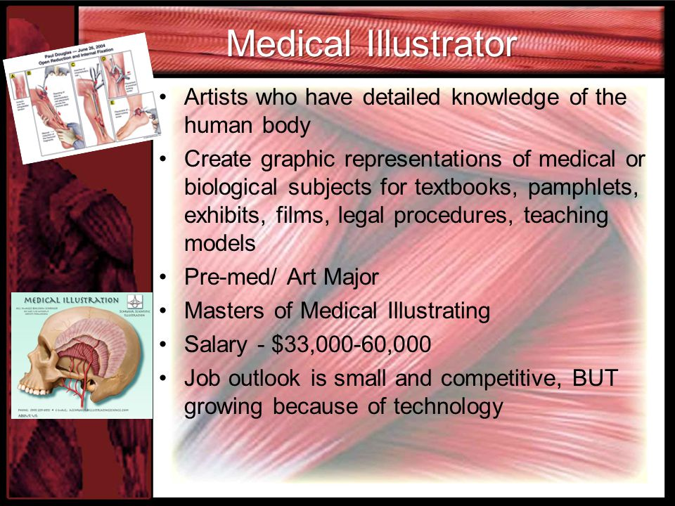 Medical Illustrator Artists who have detailed knowledge of the human body Create graphic representations of medical or biological subjects for textbooks, pamphlets, exhibits, films, legal procedures, teaching models Pre-med/ Art Major Masters of Medical Illustrating Salary - $33,000-60,000 Job outlook is small and competitive, BUT growing because of technology