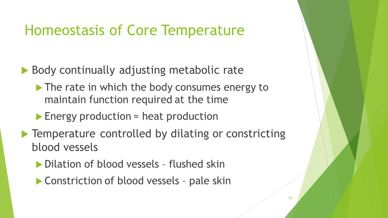 Homeostasis of Core Temperature  Body continually adjusting metabolic rate  The rate in which the body consumes energy to maintain function required