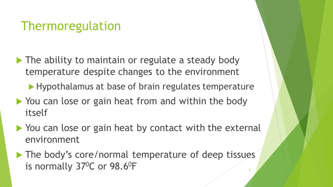 Thermoregulation  The ability to maintain or regulate a steady body temperature despite changes to the environment  Hypothalamus at base of brain re