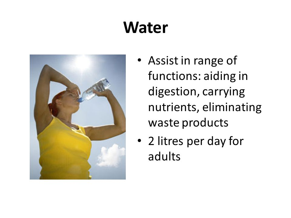 Water Assist in range of functions: aiding in digestion, carrying nutrients, eliminating waste products 2 litres per day for adults