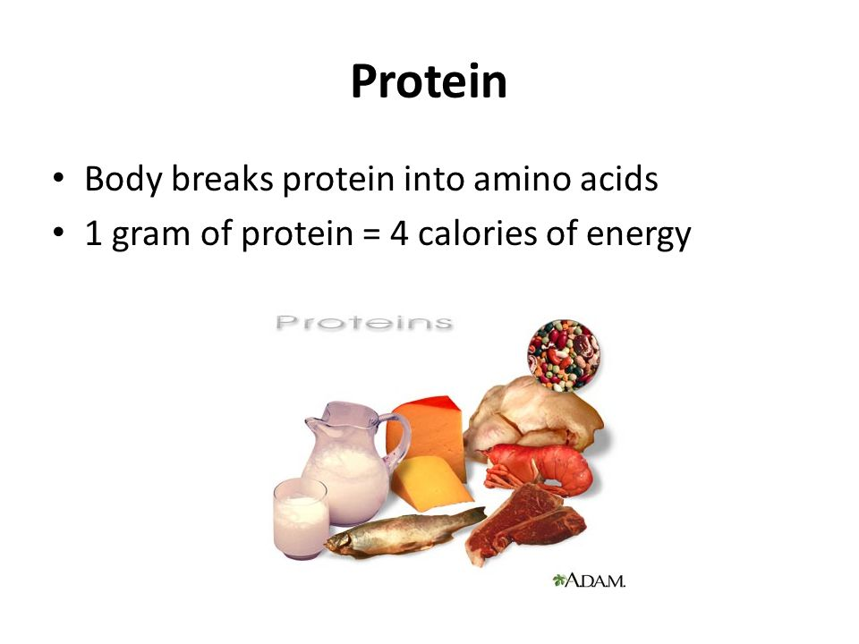 Protein Body breaks protein into amino acids 1 gram of protein = 4 calories of energy
