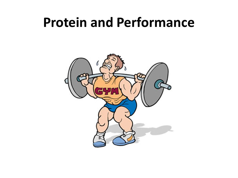 Protein and Performance
