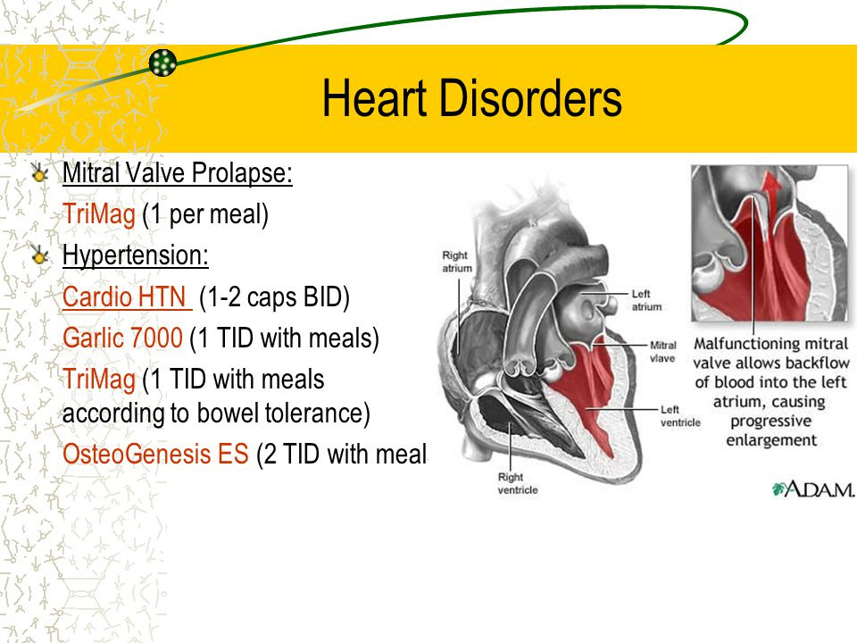 Heart Disorders Mitral Valve Prolapse: TriMag (1 per meal) Hypertension: Cardio HTN (1-2 caps BID) Garlic 7000 (1 TID with meals) TriMag (1 TID with meals according to bowel tolerance) OsteoGenesis ES (2 TID with meals)