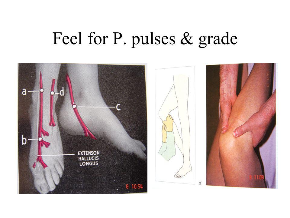 Feel for P. pulses & grade