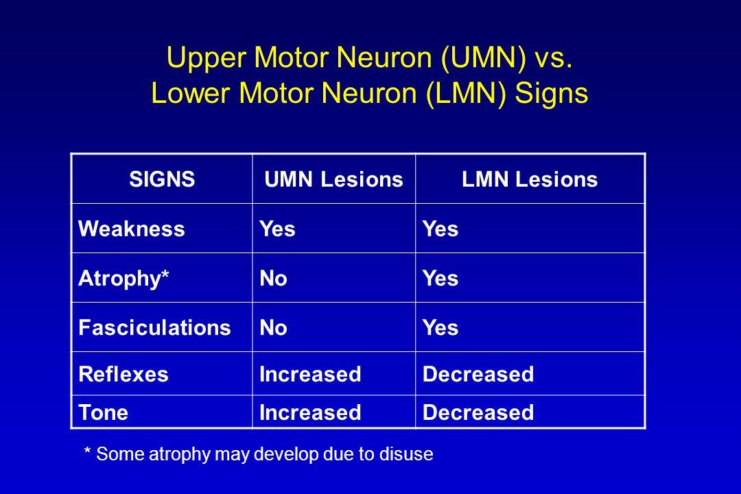 Upper Motor Neuron (UMN) vs.