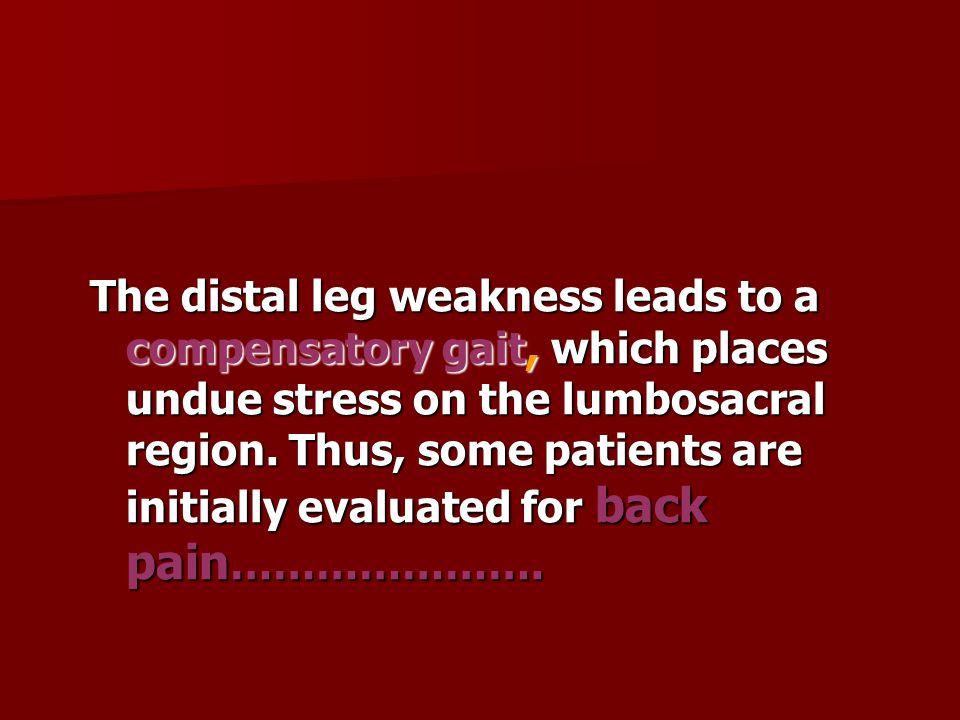 Late infantile : Difficulty ambulating,muscle cramps,limb pain,weakness,hypotonia,hyporeflexi a.slurred speech,seizure,quadriparetic,spastic &blind Late infantile : Difficulty ambulating,muscle cramps,limb pain,weakness,hypotonia,hyporeflexi a.slurred speech,seizure,quadriparetic,spastic &blind