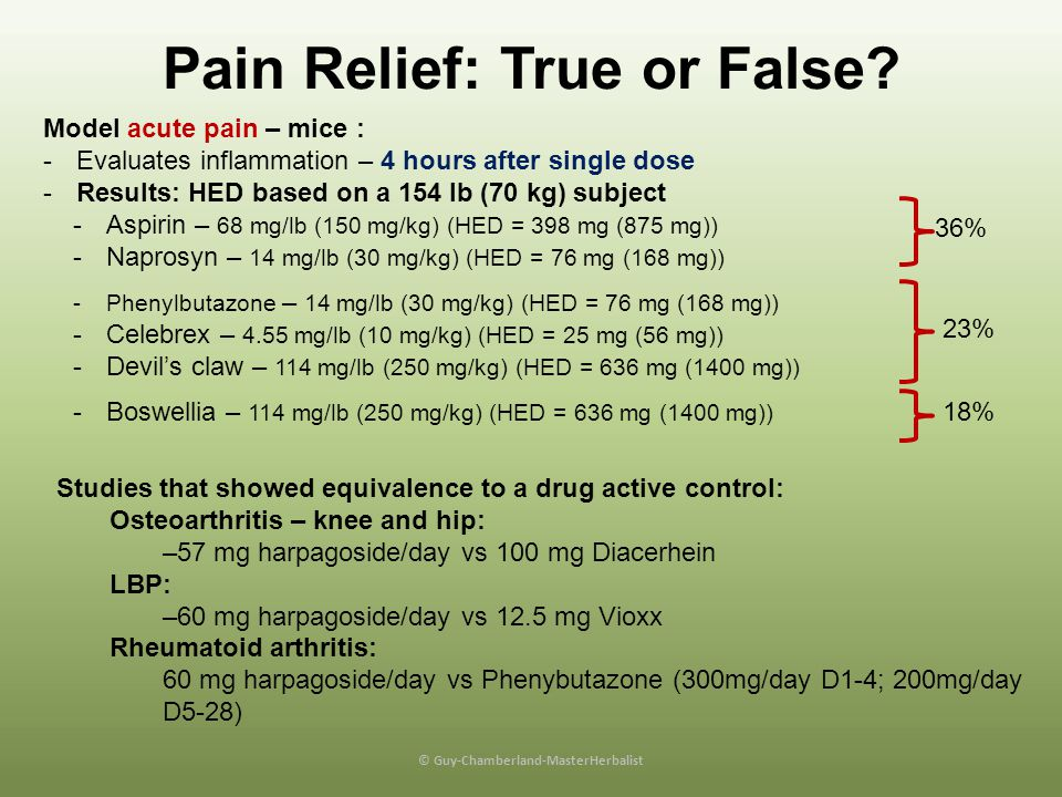 Pain Relief: True or False.Based on animal & human data = TRUE.