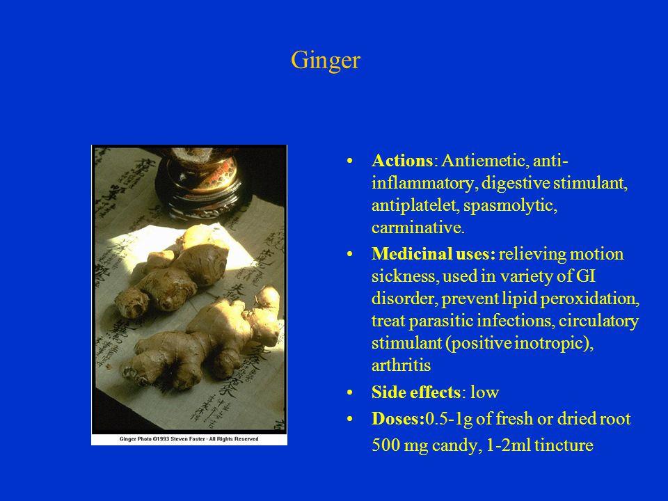 Ginger Actions: Antiemetic, anti- inflammatory, digestive stimulant, antiplatelet, spasmolytic, carminative.