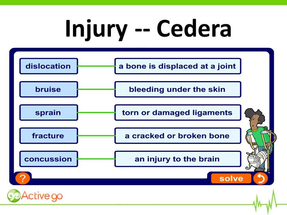 Injury -- Cedera