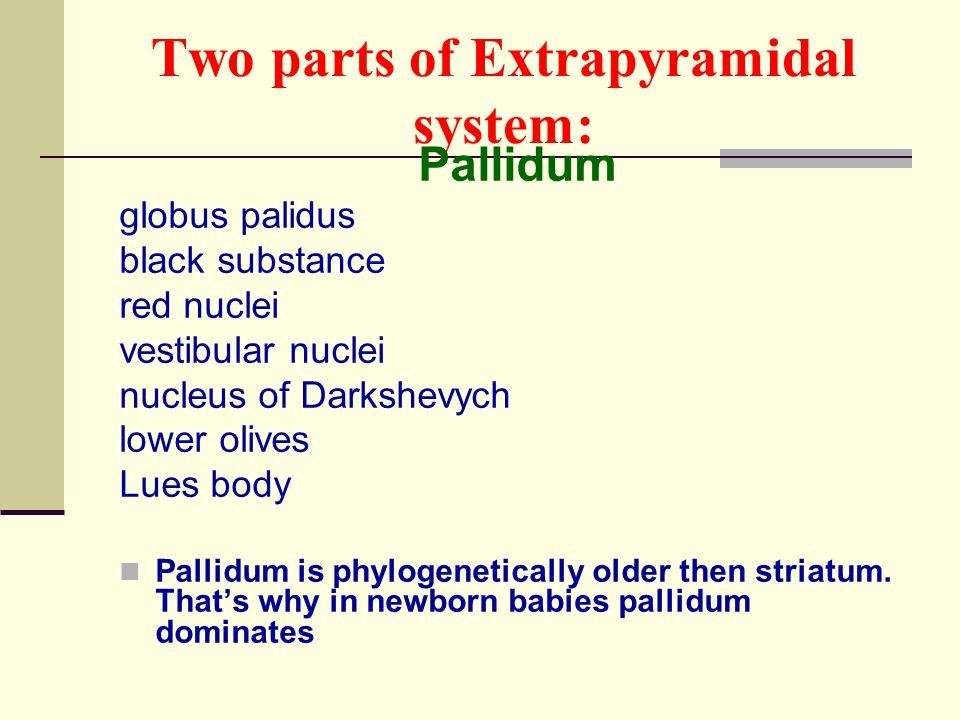 Two parts of Extrapyramidal system: Pallidum globus palidus black substance red nuclei vestibular nuclei nucleus of Darkshevych lower olives Lues body
