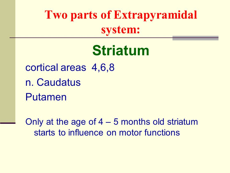 Two parts of Extrapyramidal system: Striatum cortical areas 4,6,8 n. Caudatus Putamen Only at the age of 4 – 5 months old striatum starts to influence
