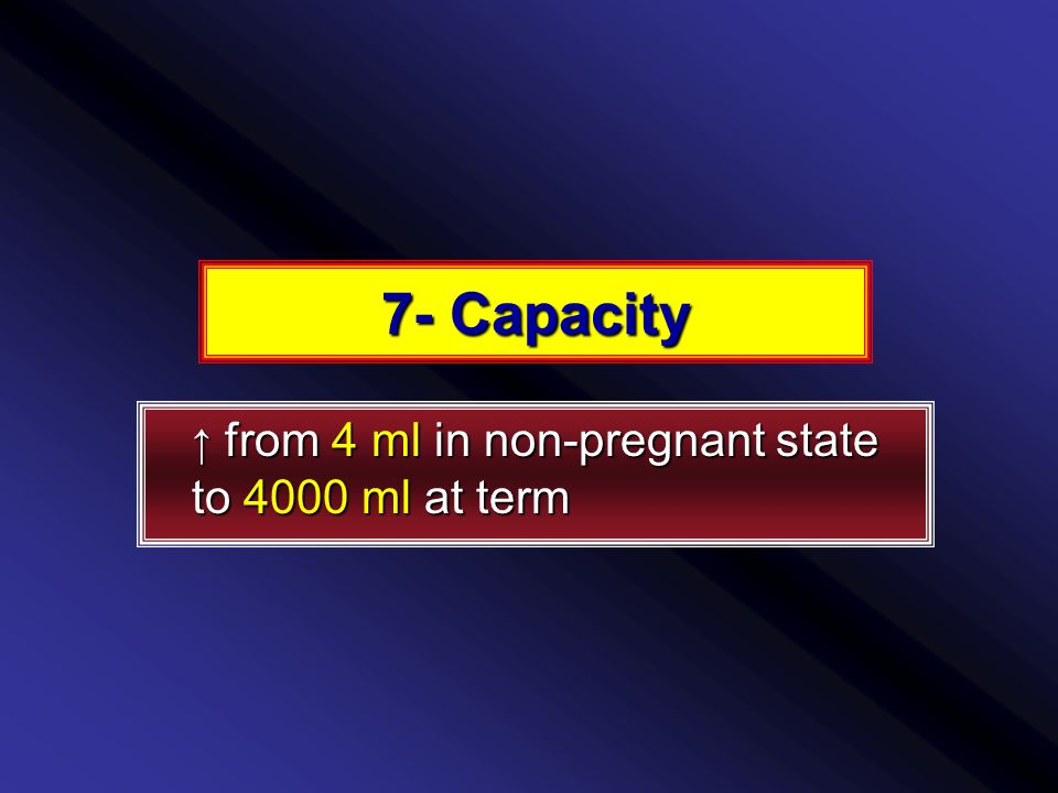 7- Capacity ↑ from 4 ml in non-pregnant state to 4000 ml at term