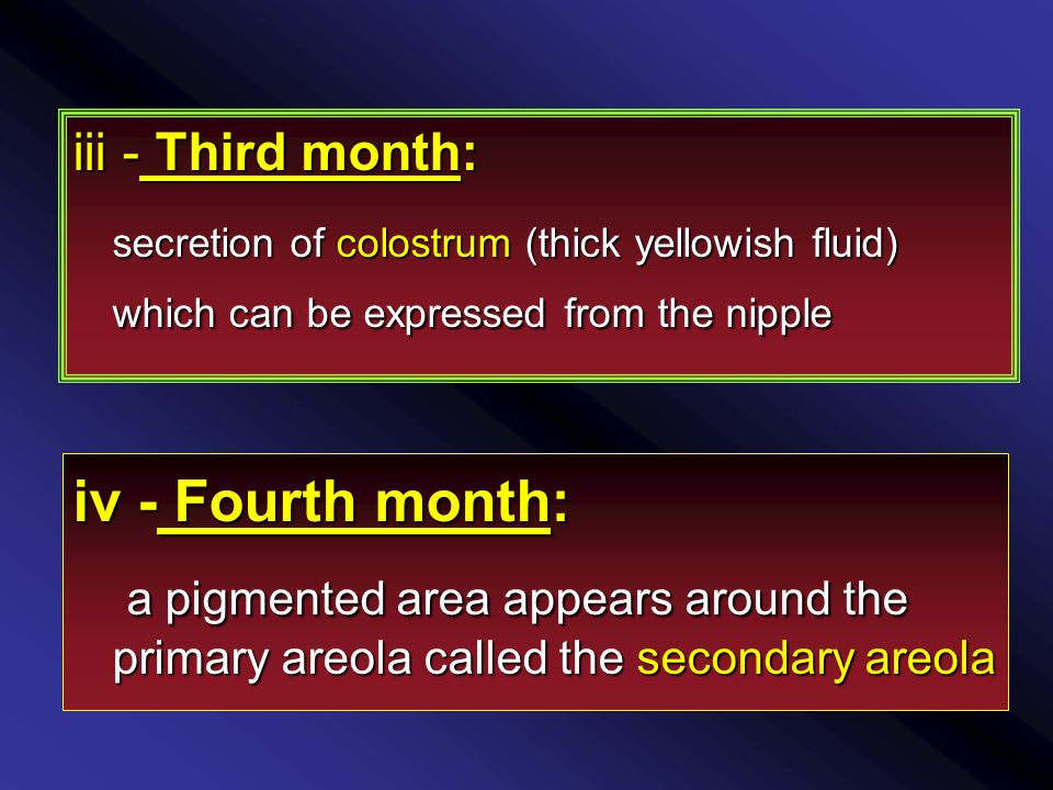 iii - Third month: secretion of colostrum (thick yellowish fluid) which can be expressed from the nipple secretion of colostrum (thick yellowish fluid) which can be expressed from the nipple iv - Fourth month: a pigmented area appears around the primary areola called the secondary areola a pigmented area appears around the primary areola called the secondary areola