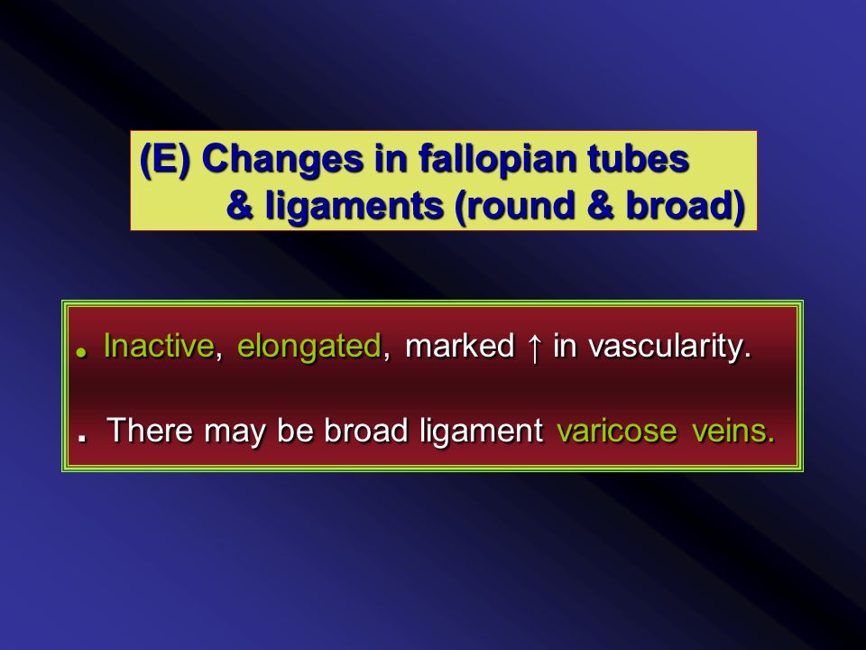(E) Changes in fallopian tubes & ligaments (round & broad).