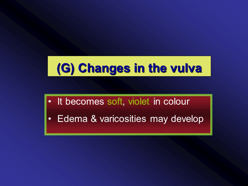 (G) Changes in the vulva It becomes soft, violet in colour Edema & varicosities may develop