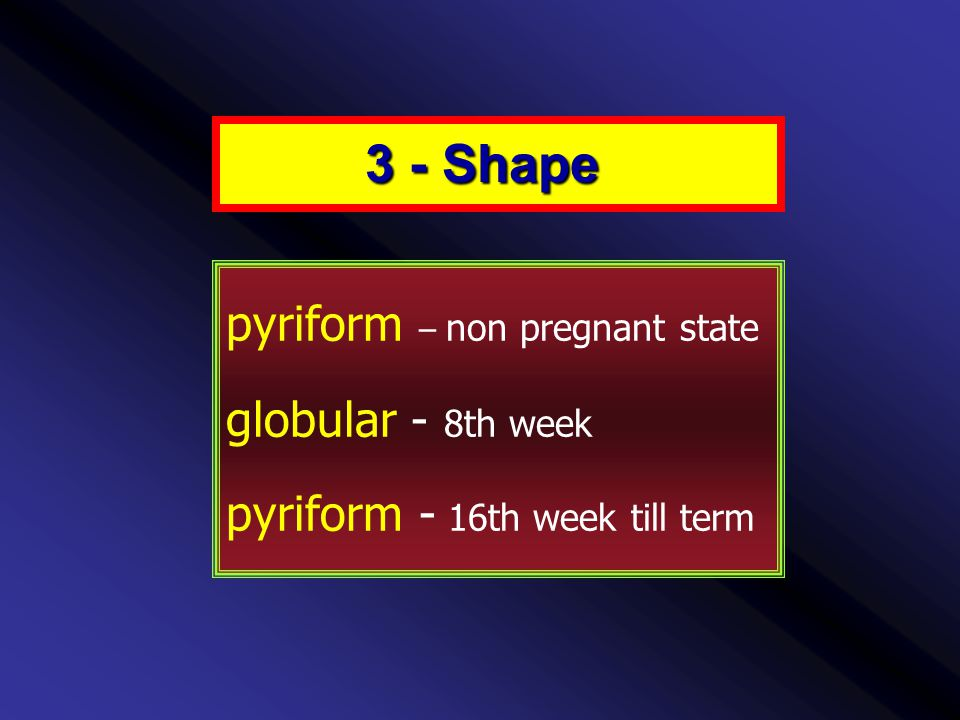 pyriform – non pregnant state globular - 8th week pyriform - 16th week till term 3 - Shape